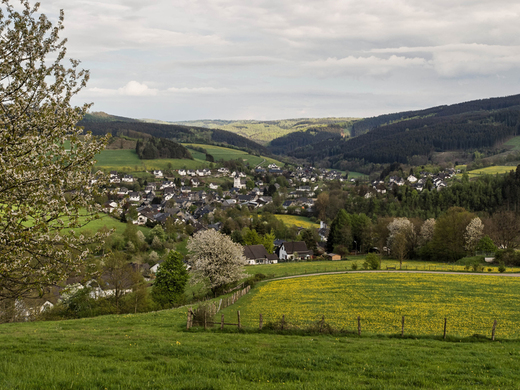 Fleckenberg im Schmallenberger Sauerland