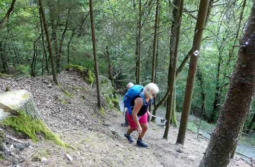 19-07-27 Schieferpfadwanderung 5.jpg