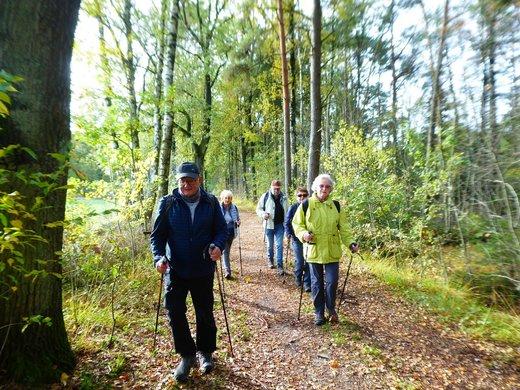 19-10-17 - Lüneburger Heide 3.jpg