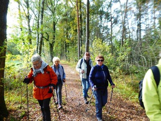 19-10-17 - Lüneburger Heide 4.jpg