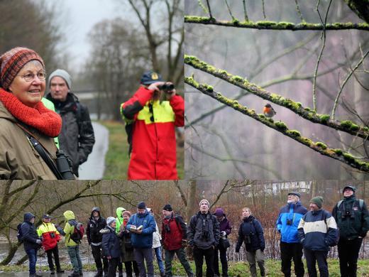 20-01-19 Wintergäste 1.jpg