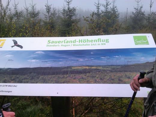 Sauerland Höhenflug.jpg
