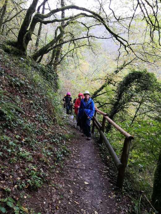 Wanderfreizeit Eifel 2019_4.jpg