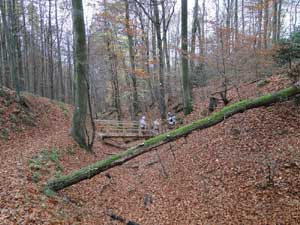 Von Wiehl nach Waldbröl - Wandern bei jedem Wetter!