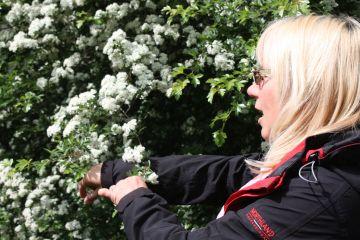 Andrea Hirsch - Naturschutzwartin vom Bezirk Dortmund-Adrey informiert