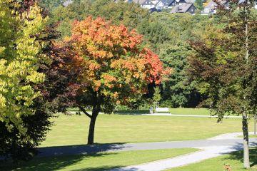Herbstwandern mit dem SGV Aplerbeck