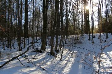 Winterwandern bei klarer Luft