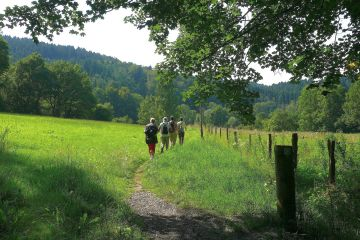 SGV bietet Wandervielfalt