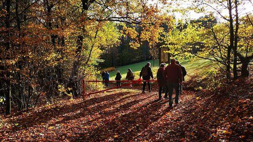 Herbststimmung (Foto W.-D. Sonnenburg)