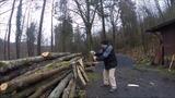 Holzarbeiten 19-03-16 A