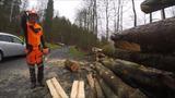 Holzarbeiten 19-03-16 B