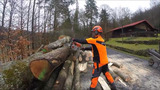 Holzarbeiten 19-03-16 C