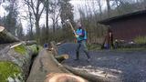 Holzarbeiten 19-03-16 F
