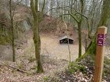 6 - Katzenloch Weidelsburg - NP Habichtswald (Thöne-Bächt)