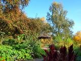 8 - Kurpark Kräutergarten Bad Enstal - NP Habichtswald