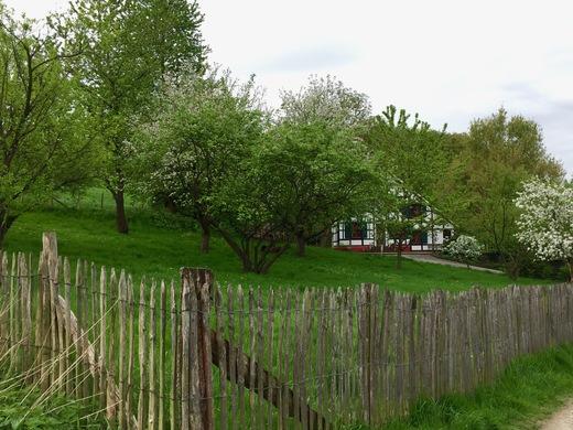 Frühlingsidylle am Wupperweg