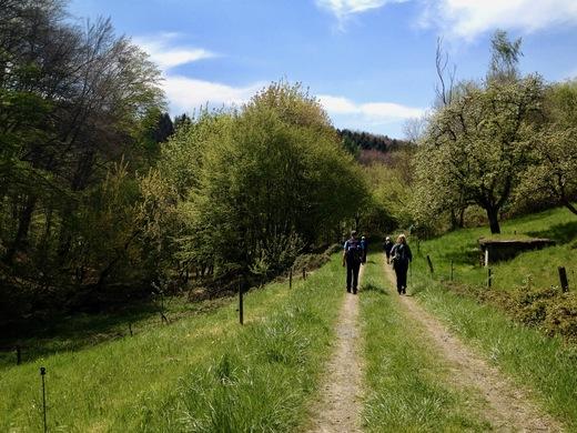 Auf dem Bergischen Weg