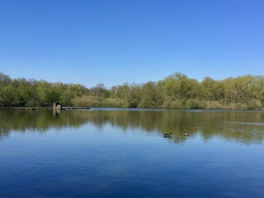 Ein schöner Ort für eine kurze Rast: der Brunosee