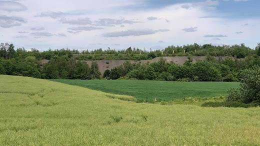 Weite Felder mit Blick auf die Halde Lothringen