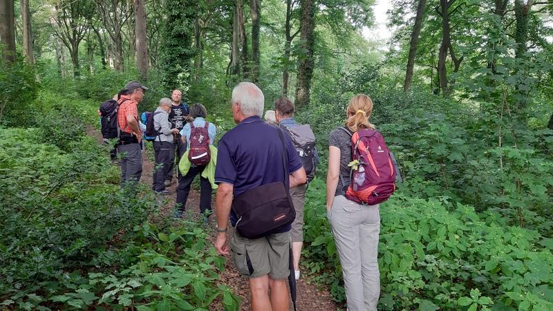 Auf Naturpfaden bei Mülheim