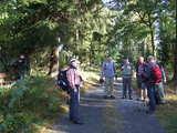 Männerwanderung im Krottdorfer Forst