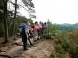 Auf dem Dahner Felsenpfad