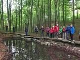 Quelle im Weserbergland