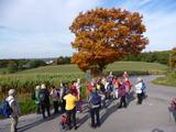 19.10.13 ... auf dem Harkort- / Ruhrhöhenweg