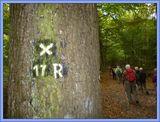 19.10.13 Harkortweg (X17) und   Ruhrhöhenweg (XR)