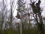 22.3.14 Handwerker- /Vereinsbaum in Urdenbach
