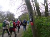 22.3.14 ... auf dem D-Weg 4. / Schlussetappe > Benrath <