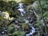 23.08.14  Auf dem Rheinsteig - z.Z. hat der Wasserfall wenig Wasser.