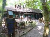 27.5.15 Museum Insel Hombroich