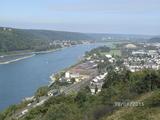 28.08.15 Blümchenwanderung /Ein Blick auf den Rhein