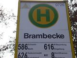 4.11.15 Von Brambecke zum Brauhaus in W-Barmen