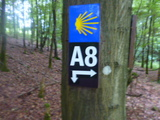 30.07.16  A8 Rundwanderung Breckerfeld, 20 km