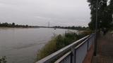 01.10.2016  Ein Blick über den Rhein