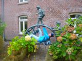 22.10.16 Herbst am Niederrhein, Kletterliesel Margret