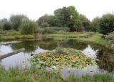12.10.16 Nettetaler Seen mit dem TSV-Hochdahl