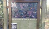 28.01.17  Durch das Naturschutzgebiet Neandertal