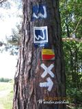 27.05.17 Der Birgeler Urwaldsteig