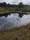 26.08.17 Heide und Elfenmeer, Naturpark De Meinweg
