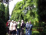 02.09.17 Führung im Arboretum Park Härle, Bonn-Oberkassel