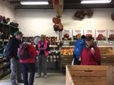 28.10.17 Wie jedes Jahr  Apfelprobe und -kauf im Hofladen