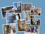 22.2.18 Ein Wintertag an der Wupper,von Güldenwerth nach Unterburg