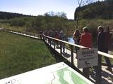 05.05.18 Moorpfad Dahlem im Naturpark Hohes Venn