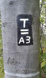 1.11.18 Von Hagen Felsenstraße nach Voerde, 3-Türme-Weg