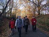 21.11.18 Auf dem Bergischen Weg, mit Wanderführerin Vera