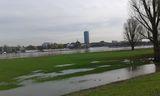20.03.19 Rheindeich, D-dorf-Oberkassel, Hochwasser