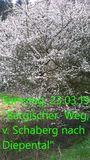 23.03.19 Bergischer Weg von Schaberg nach Diepental